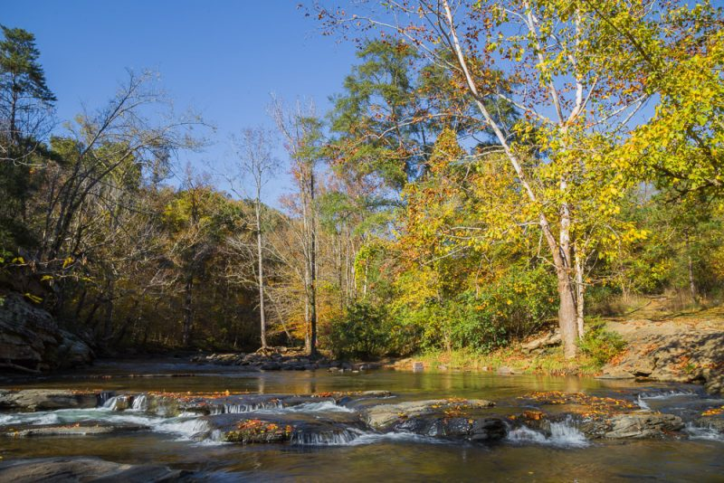 181110 Turkey Creek Nature Preserve In The Fall IMG_1290 S