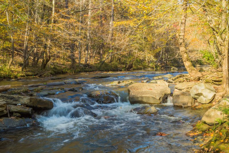 181110 Turkey Creek Nature Preserve In The Fall IMG_1346 S