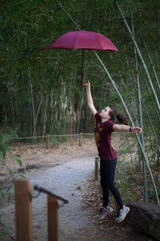 190207 Umbrella Shoot at Botanical Gardens IMG_4657 s