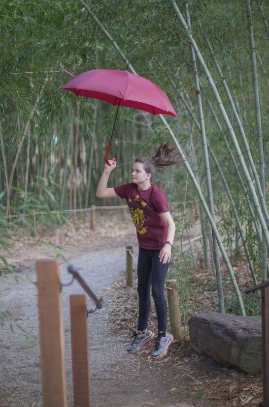 190207 Umbrella Shoot at Botanical Gardens IMG_4668 s