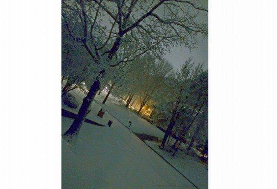 Night Snow in Alabama