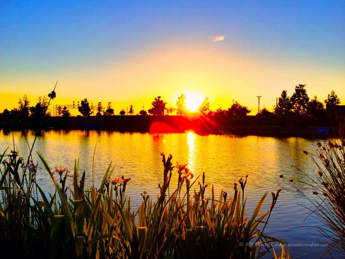 The Lake at Railroad Park