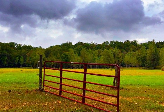 The Open Gate to Autumn