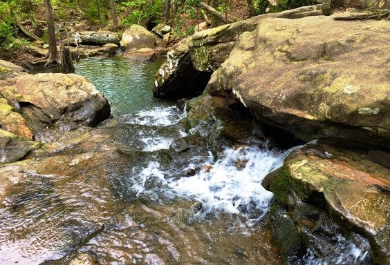 The Falls at Moss Rock
