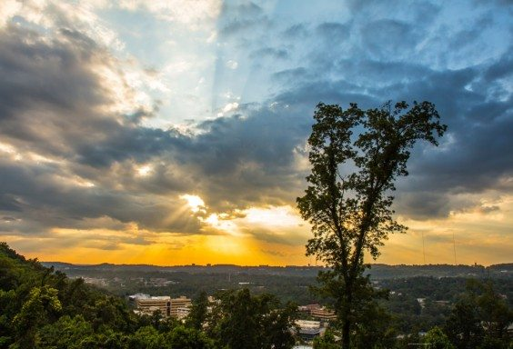 Open Skies Over Homewood