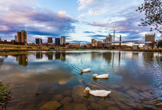 151216d-Birmingham-for-the-Ducks