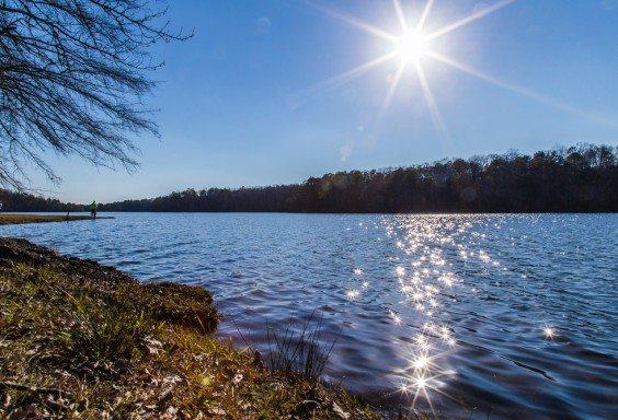 160305v-Lake-Lurleen