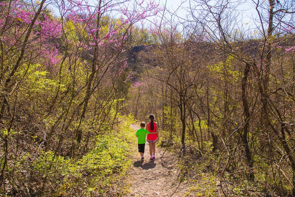 160321d-Sibling-Hike