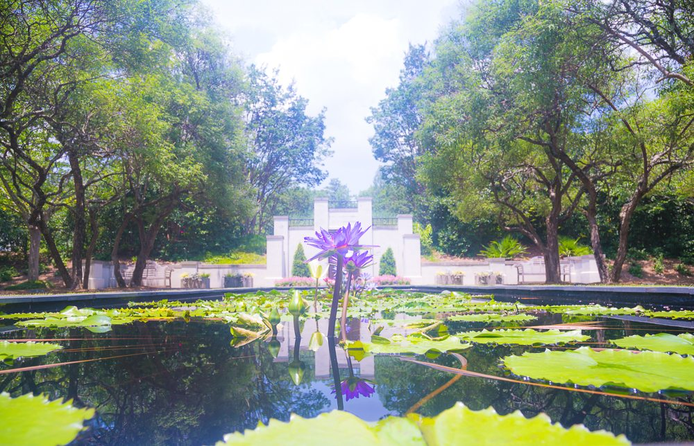 160626h-Botanical-Gardens