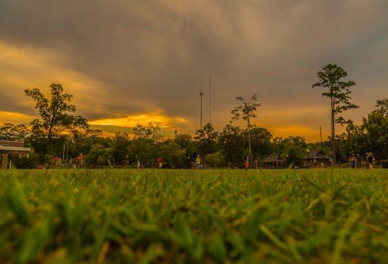 160730b-Playing-at-Homewood-Park