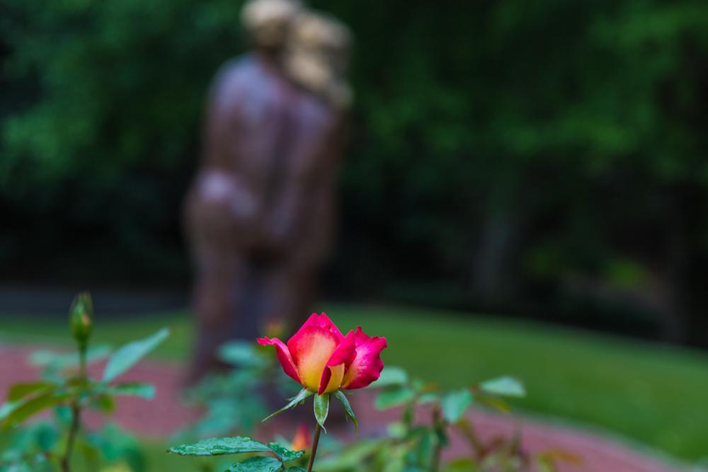 170919 Botanical Gardens IMG_2947