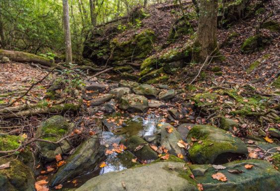 171015 Moss Rock Preserve High Falls IMG_4734