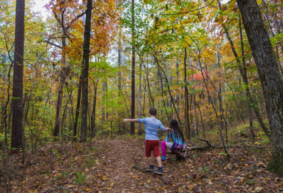 171107 Hiking at Oak Mountain in the Fall IMG_8969S