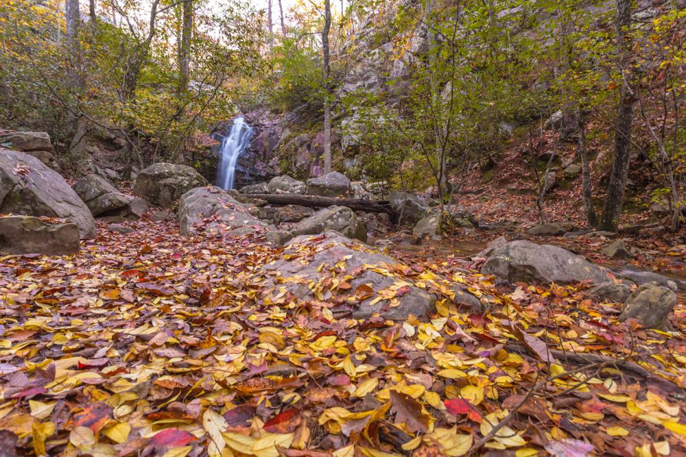 171109 Peavine Falls in the Fall IMG_9779S