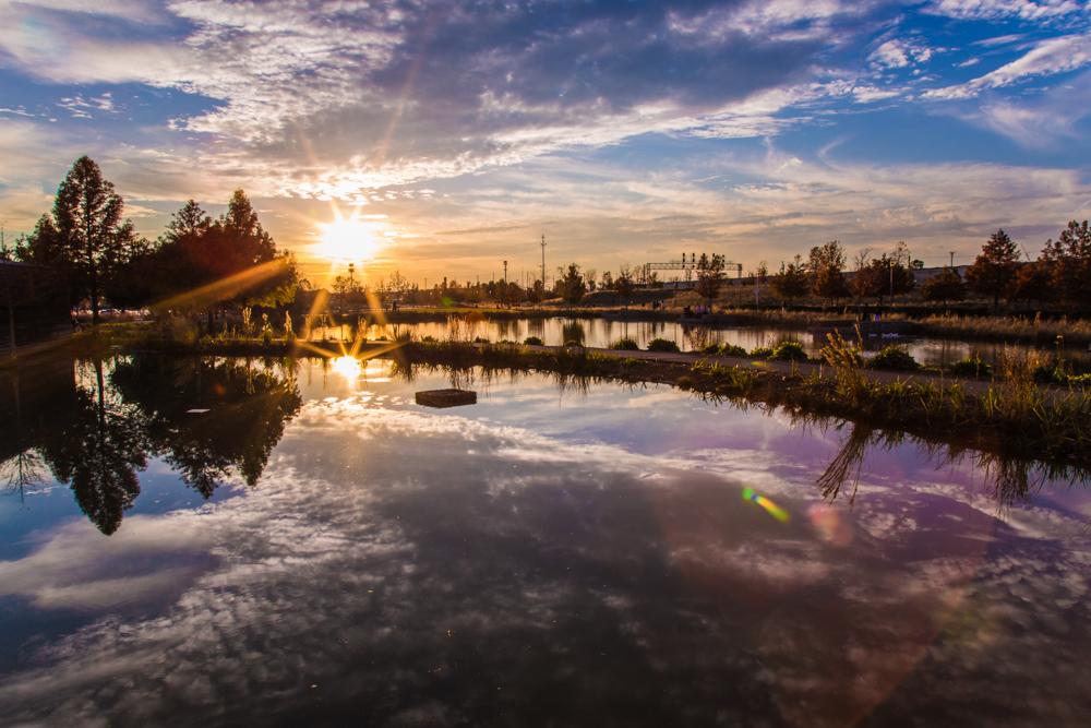 171024 Railroad Park Sunset IMG_5619 s