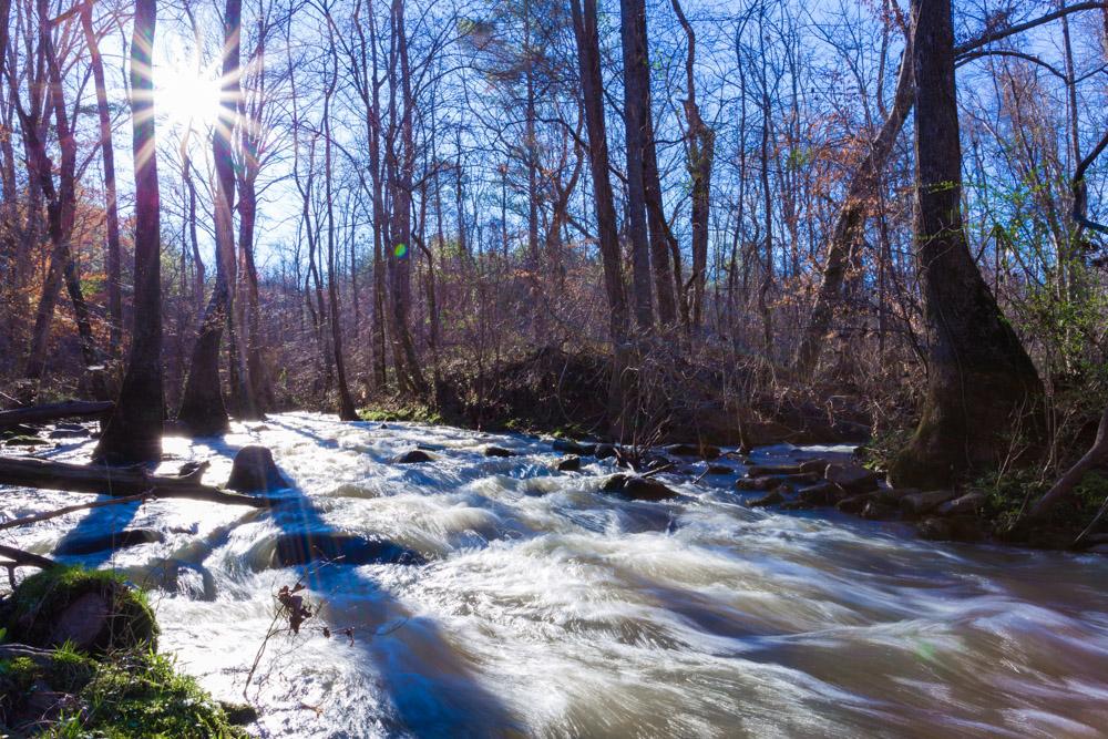 180302 Rushing Kelly Creek IMG_5019 s