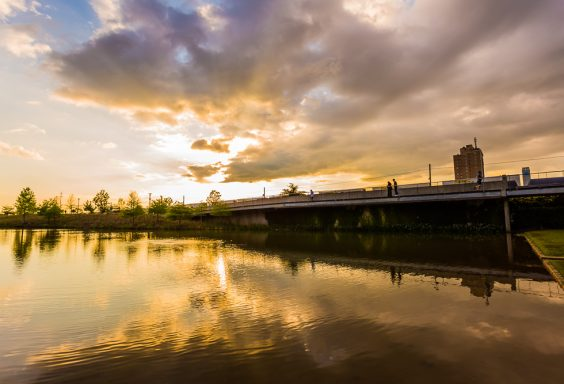 180423 Sunset at Railroad Park IMG_1306 S