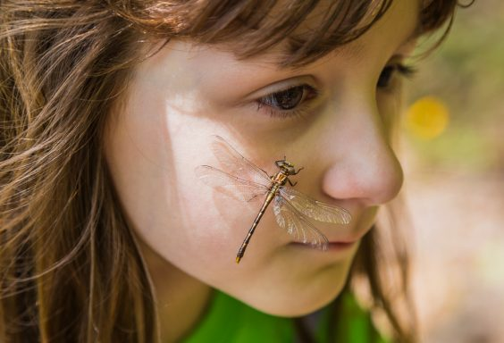 180425-Eden-with-the-dragonfly-IMG_2056 s
