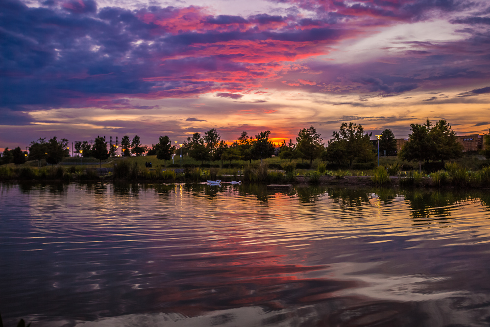 180809 pink and purple sunset at railroad park IMG_2233 s