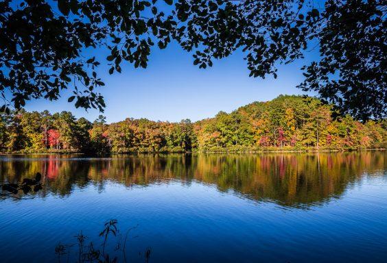 181029 Oak Mountain Lake in the Fall IMG_9004 S