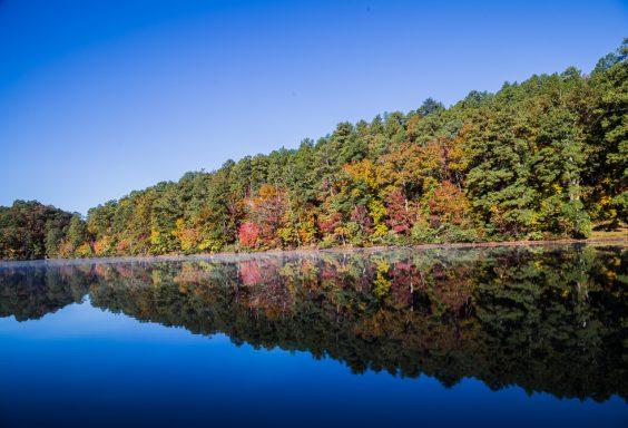 181103 oak mountain in the fall IMG_9346 S