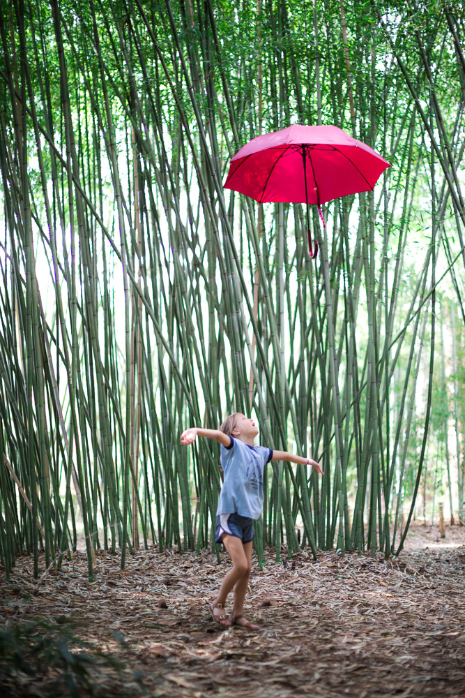 190207 Umbrella Shoot at Botanical Gardens IMG_4545 s