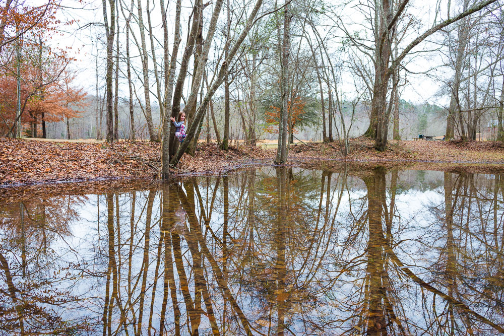 190102-up-a-tree-over-a-pond-IMG_0020 S