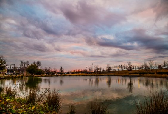 190122-musical-clouds-over-railroad-park-IMG_2331 S