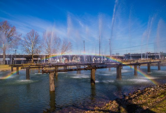 190125-sloss-and-the-rainbow-IMG_2636 S