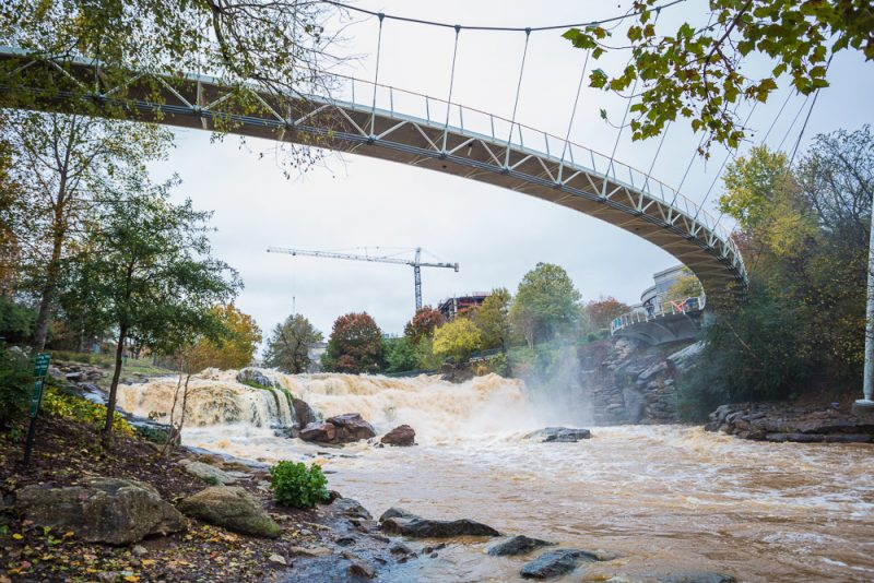 181115-Reedy-Falls-Greenville-IMG_1802 s