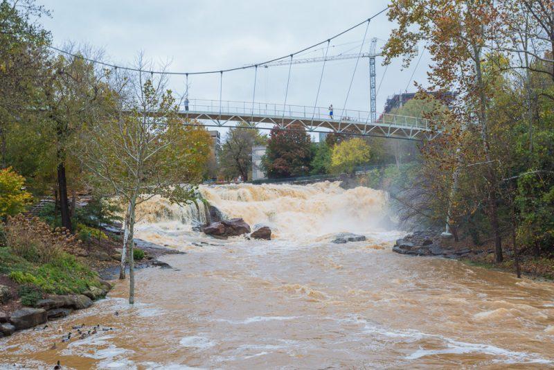 181115-Reedy-Falls-Greenville-IMG_1823 s