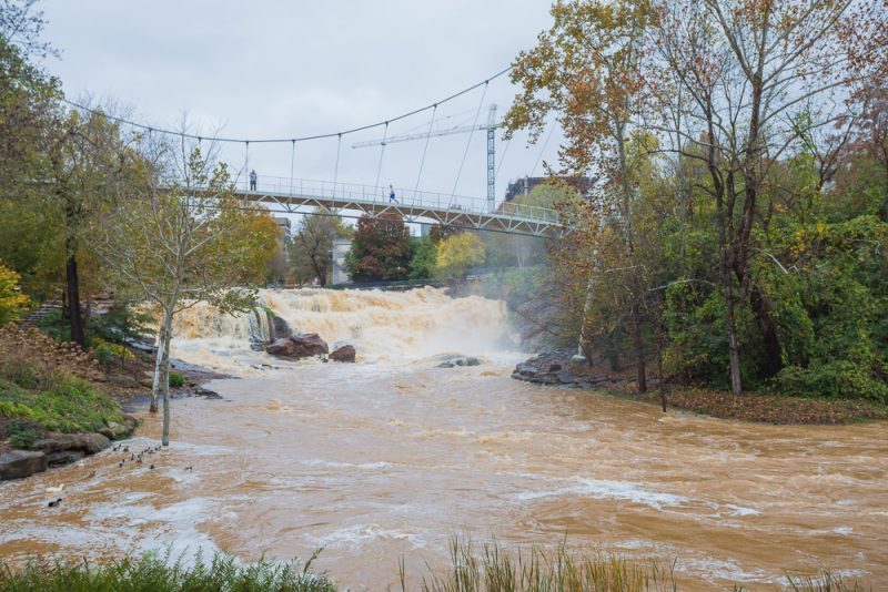 181115-Reedy-Falls-Greenville-IMG_1830 s