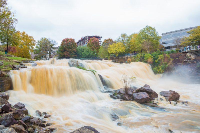 181115-reedy-falls-greenville-IMG_1764 s