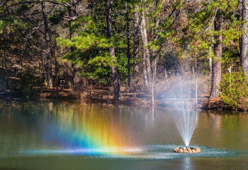 181218-rainbow-fountain-aldridge-gardens-IMG_9791 s