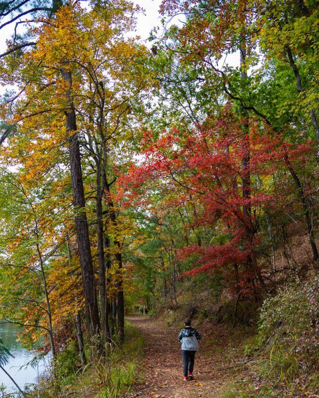 191104 oak mountain gorgeous fall day IMG_0645 S