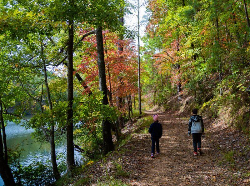 191104 oak mountain gorgeous fall day IMG_0653 S