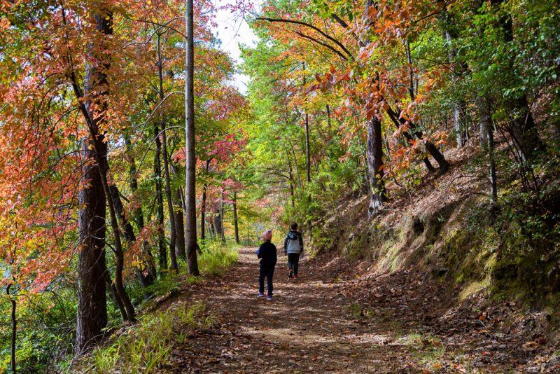 191104 oak mountain gorgeous fall day IMG_0660 S