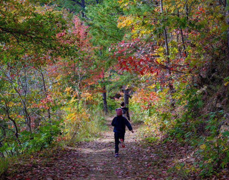 191104 oak mountain gorgeous fall day IMG_0678 S