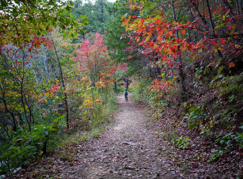 191104 oak mountain gorgeous fall day IMG_0739 S