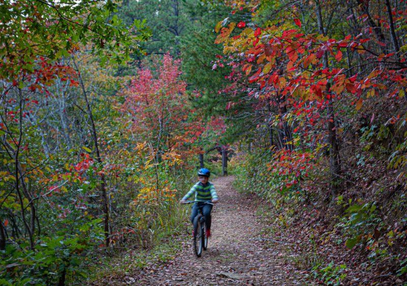 191104 oak mountain gorgeous fall day IMG_0750 S