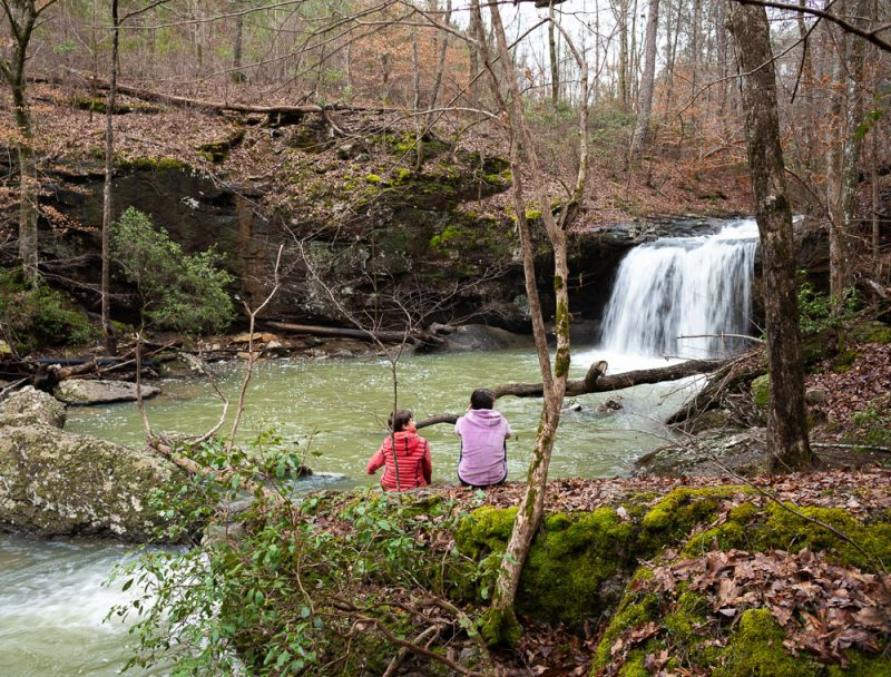 200213 Goggins Falls Hike at Jesses Creek 2M7A4449 s