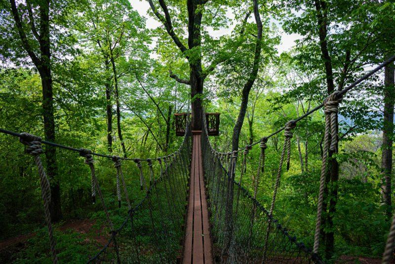 200406 red mountain park treehouse swinging bridge 2M7A7018 s