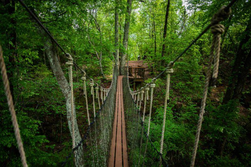 200406 red mountain park treehouse swinging bridge 2M7A7051 s