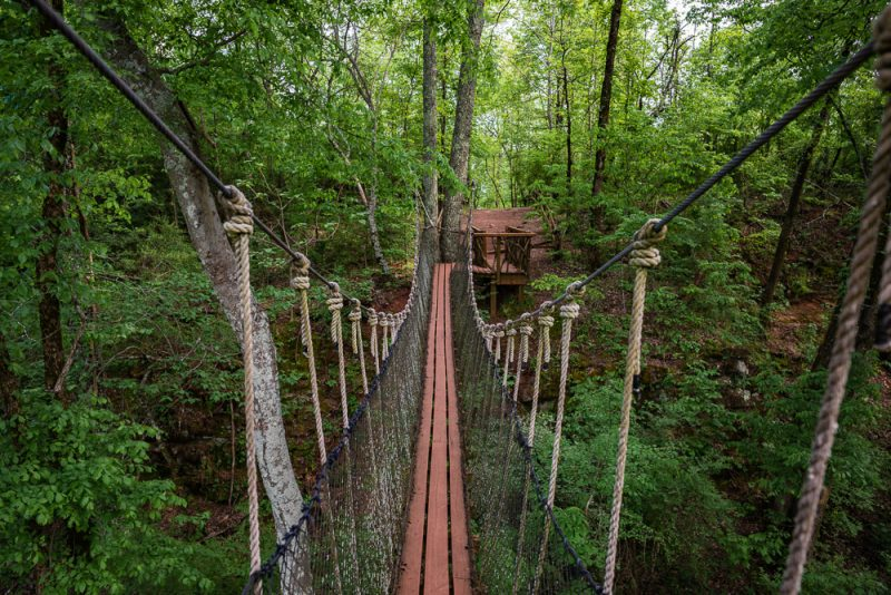 200406 red mountain park treehouse swinging bridge 2M7A7077 s