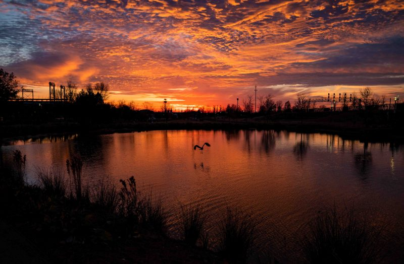 191128-railroad-park-sunset-spectacular-for-thanksgiving-2M7A0457 web