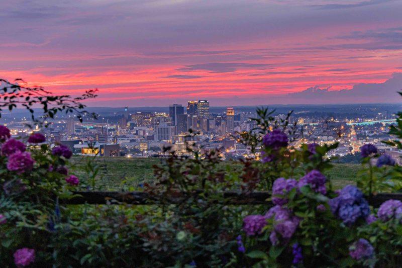 210604 crest road pink sunset through garden RZC_4770 r